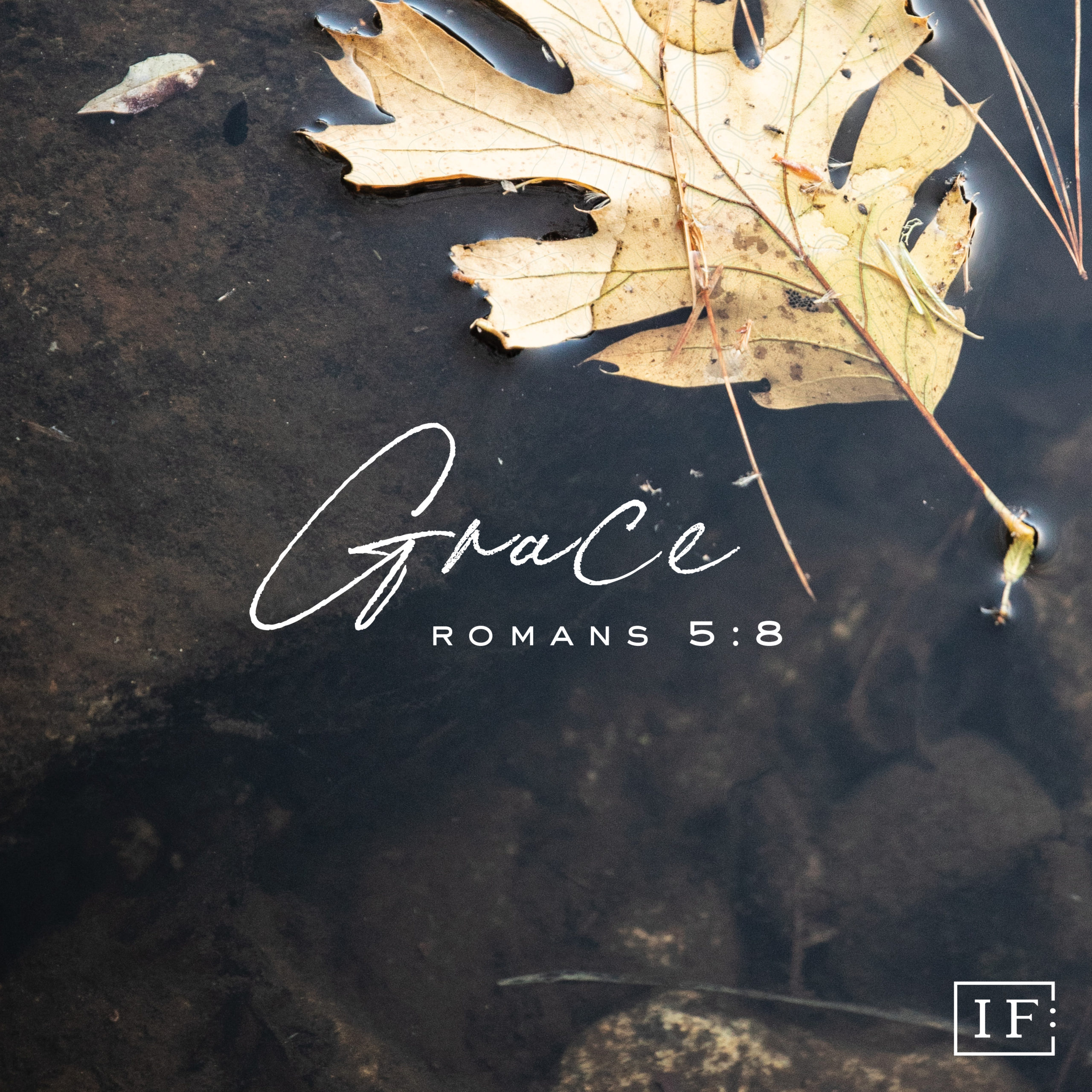 The Gift of Grace Book Cover