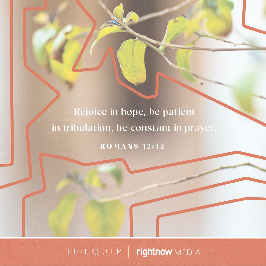 Jesus Will Provide Book Cover